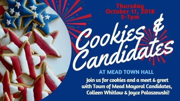 COOKIES AND CANDIDATES